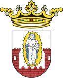 logo-virgen